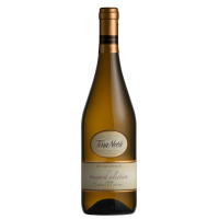 Terra Noble – Chardonnay Vineyard